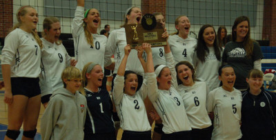 Volleyball heads to state tournament