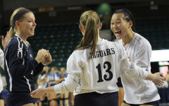 Volleyball season ends after losses at state tournament