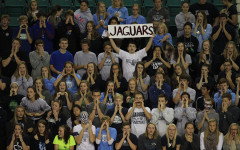 Photo Gallery: state volleyball vs. St. James: Nov. 1