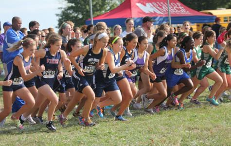 Cross country comes in second at meet