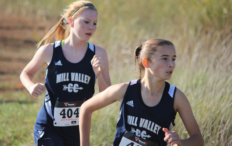 Photo Gallery: Cross country at Lansing: Oct. 17