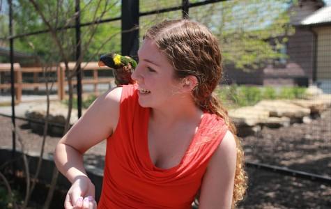 Photo Gallery: Senior class at the Kansas City Zoo:May 6