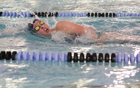 Swimming the freestyle, sophomore Jordan Robinson competes in an invitational at Shawnee Mission East on Saturday, April 23.