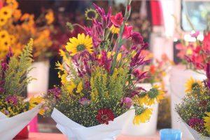 nl-flower2