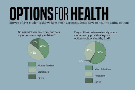 web-graphic-options-for-health