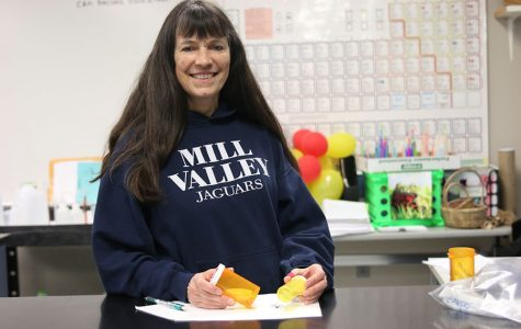 Substitute teacher Diane Barger researches spiders found in her home