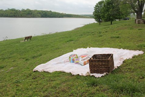 A detailed guide to organizing the ideal picnic experience