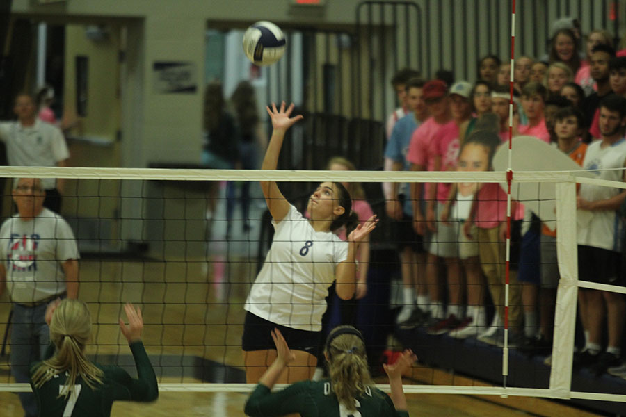 Jumping+up+for+a+spike%2C+senior+Allie+Harvey+prepares+to+hit+the+ball.