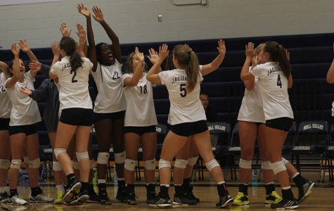 Volleyball triumphs in three-set match against Blue Valley North