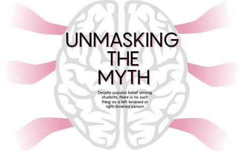 Myth of brain hemisphere dominance contrasts popular belief