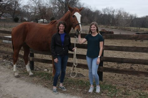 Twin Mill Farm offers local horse boarding services