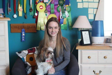 Junior Aniston Cumbie participates in competitive dog showing