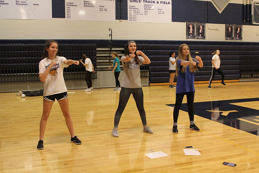 During+fourth+block+on+silver+day%2C+freshmen+Tatum+Elliot%2C+Kylie+Overbaugh+and++Ella+Greenup+begin+trying+different+moves+to+use+for+their+aerobic+dance+routine+on+Monday%2C+Feb.+5.+