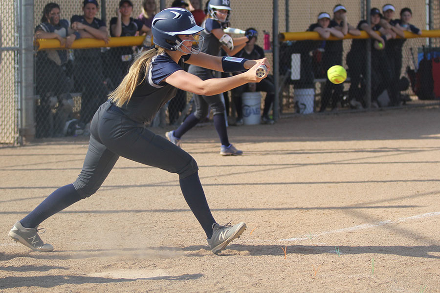 While+her+teammates+are+on+base%2C+junior+Haley+Puccio+bunts+the+ball.