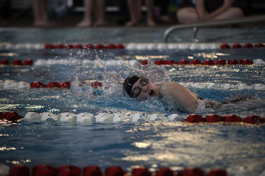 Junior+Emily+Proctor+swims+in+a+freestyle+during+one+of+her+events+on+Tuesday%2C+May+2.