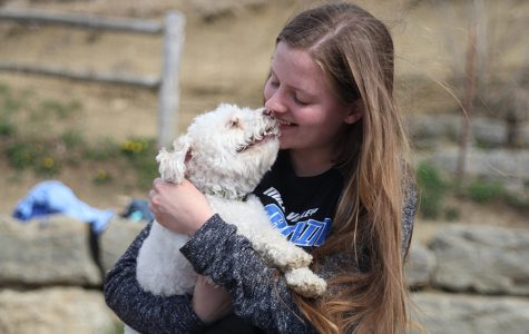 Gallery: students form companionships with pets