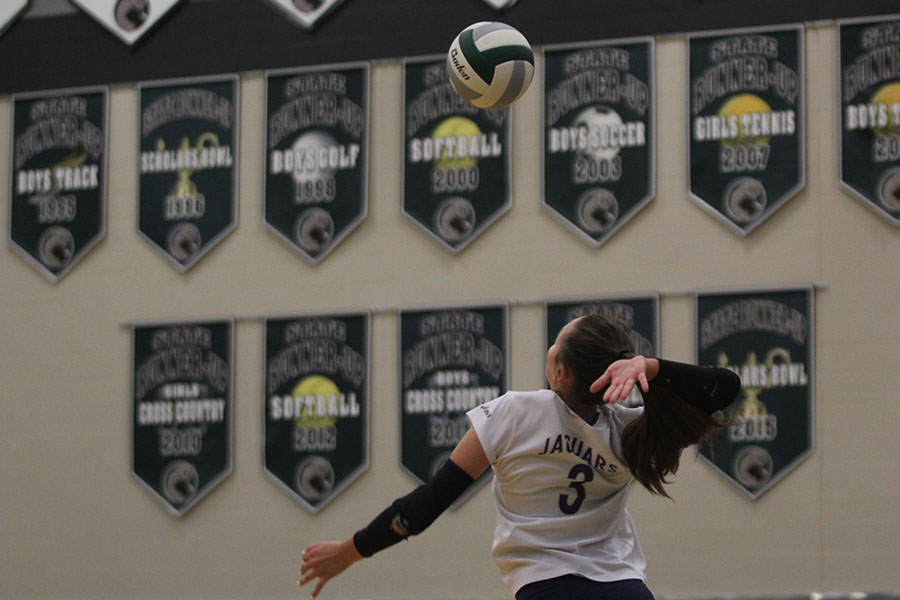 While+jumping+in+the+air%2C+sophomore+Jaden+Ravensborg+serves+the+ball.