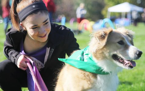 First annual Bark for Life hosted by school