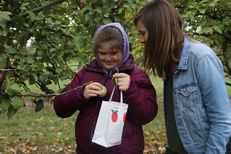 Gallery: Peers in Learning gains experience outside the classroom at Cider Hill Family Orchard