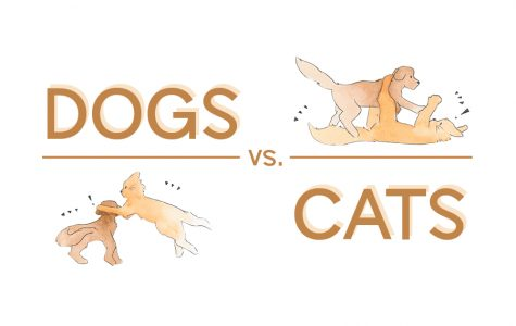 JagWire reporters debate the merits of dogs and cats as pets