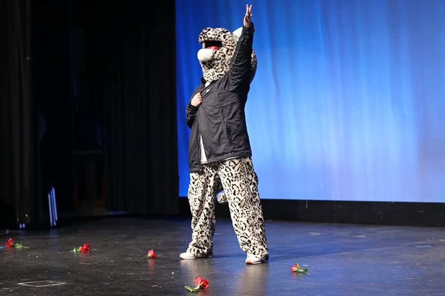 """The show begins with an introduction to """"The Bachelor"""" theme and JJ the Jaguar."""
