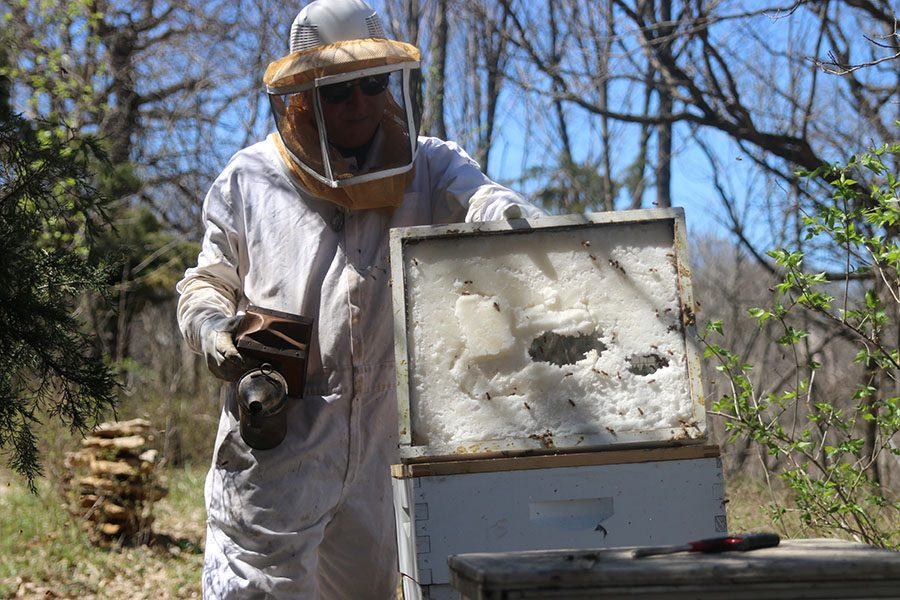 Holding up a bee smoker in his left hand, beekeeper Jeffery Hoover removes the top portion of the hive to begin his work on Monday April 8.