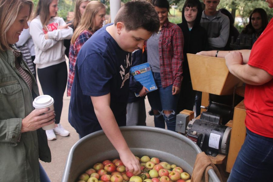 Learning how cider is made, student Max Holland picks out an apple to grind up.