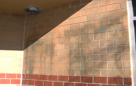 Vandals spray-paint graffiti outside school and break window
