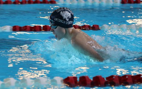 Gallery: Boys swim places fourth at Lansing