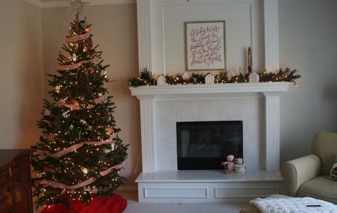 Christmas trees have been a holiday tradition since the sixteenth century.