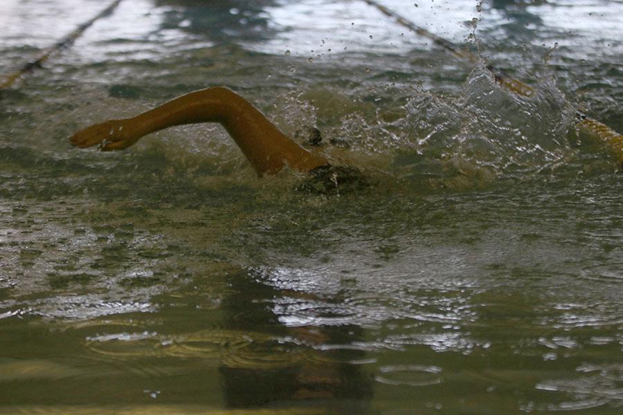 Progressing toward the flags, freshman Adam Budimlija swims the 200 meter freestyle.
