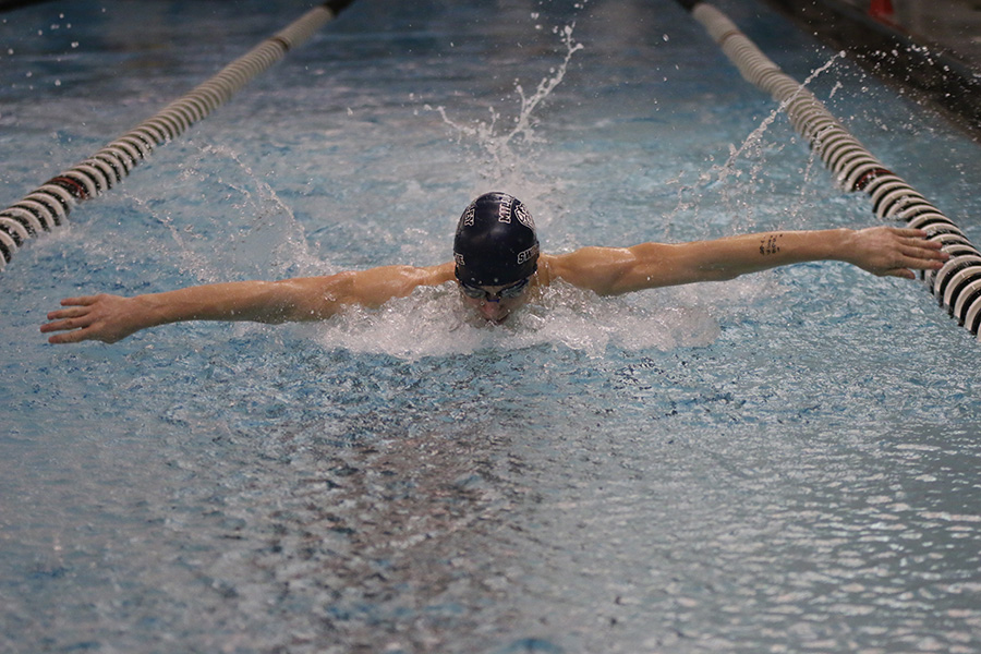 Freshman Anthony Molinaro swims in the 100-yard butterfly.