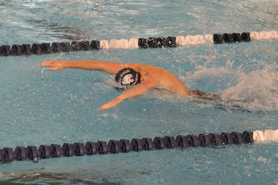 Swimming butterfly, sophomore Anthony Molinaro completes his portion of the 200-yard medley relay.