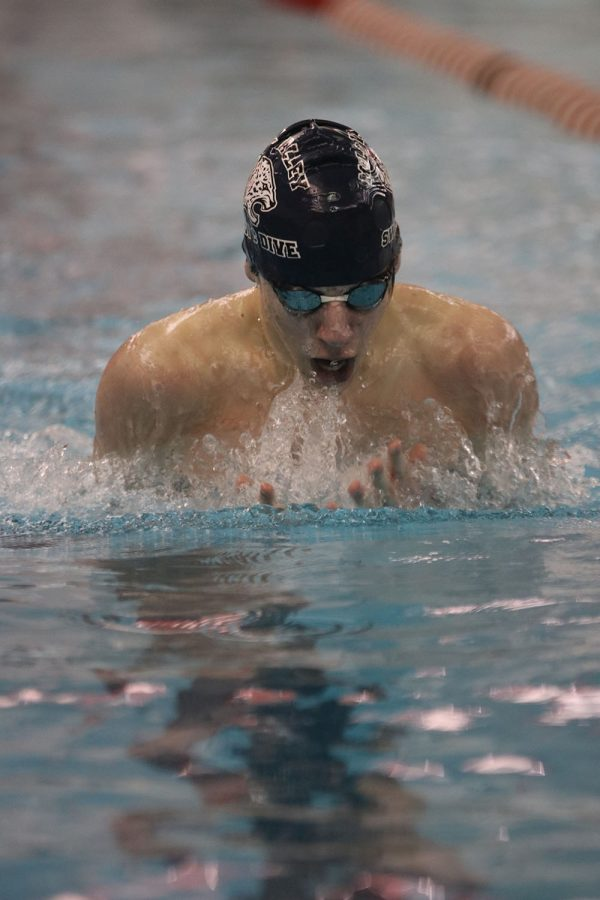Swimming the 100-yard breaststroke, sophomore Adam Budimlija places fifth overall with a time of 1:12.10.